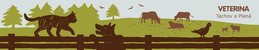 Vítejte na internetových stránkách veterinární ordinace v Plané a v Tachově